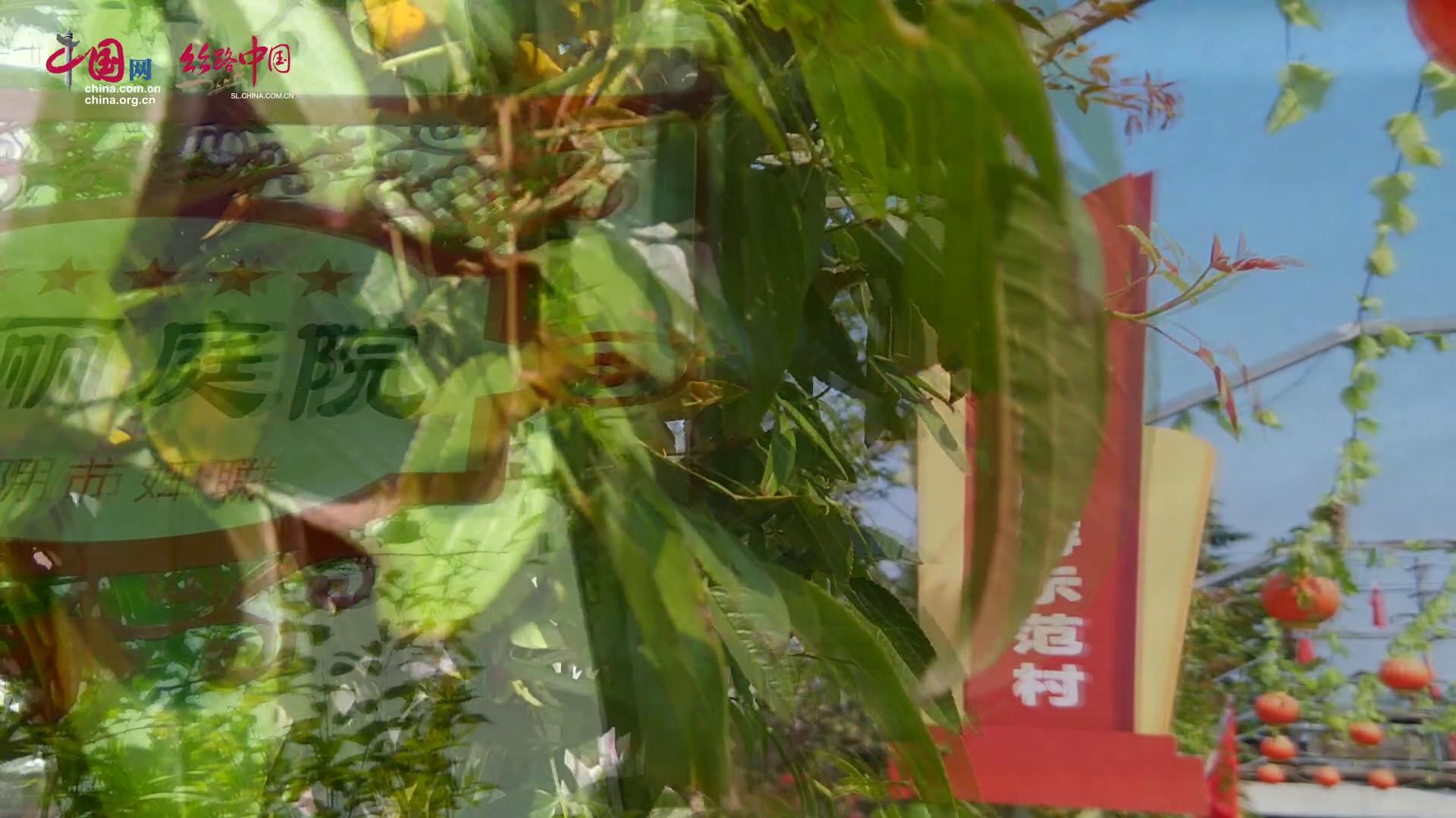华阴仙峪口村:乡村游走出别样致富路