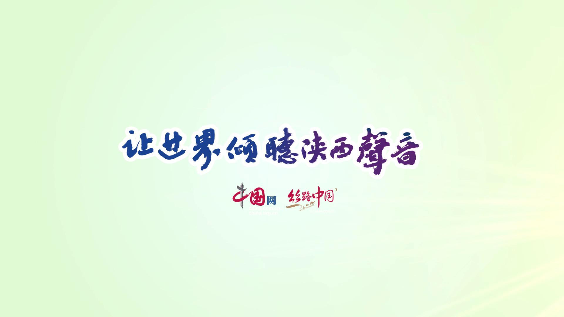 """华阴冯池村:香菊香飘 """"飘""""出老百姓的致富路"""