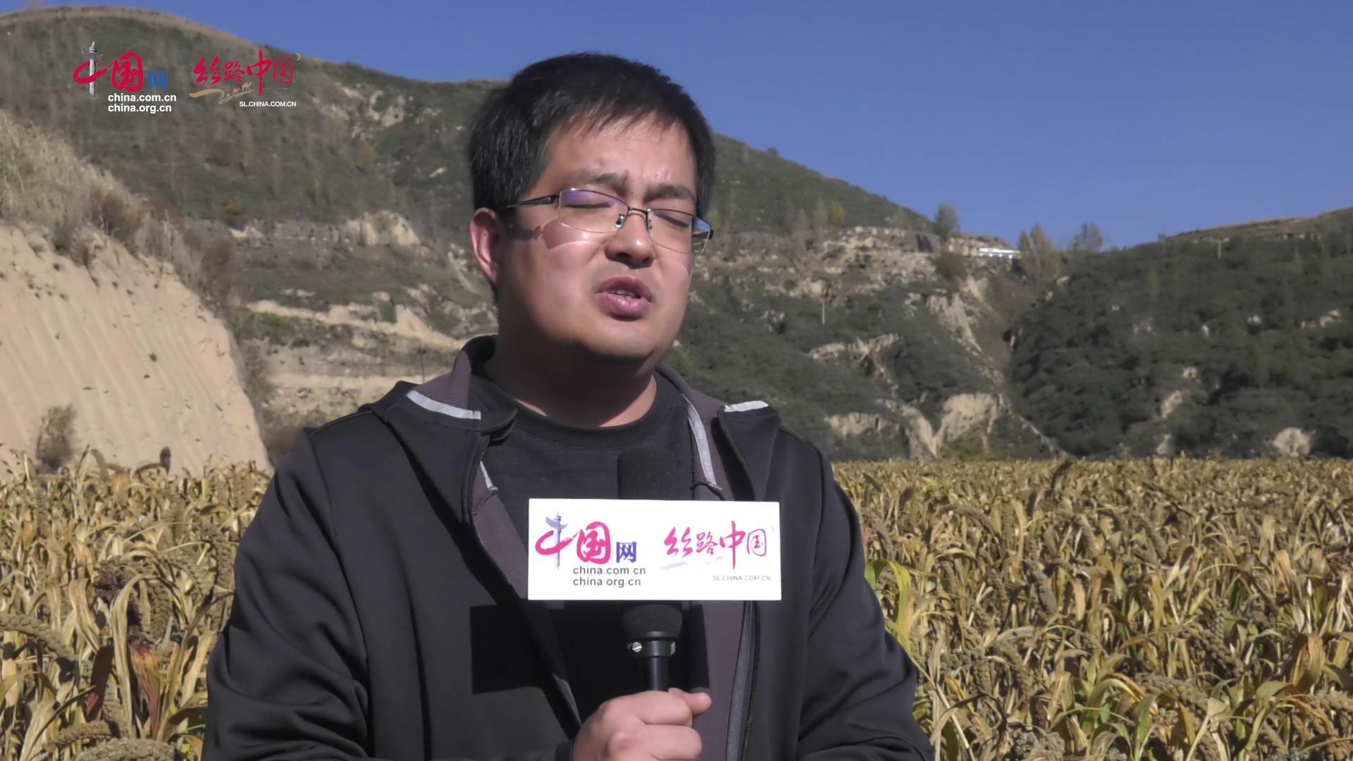 【视频】靖边四咀村:荒坡变良田 有机小米做成特色品牌
