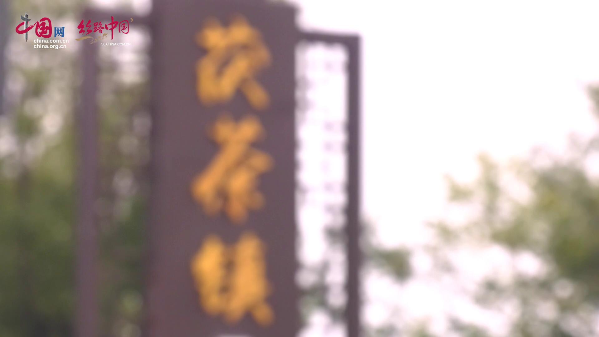 【視頻】品茶 吃美食 體驗關中民俗文化 涇河新城茯茶鎮一應俱全