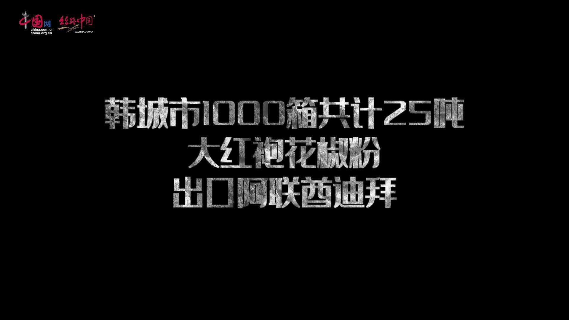 【视频】韩城花椒产品出口阿联酋迪拜