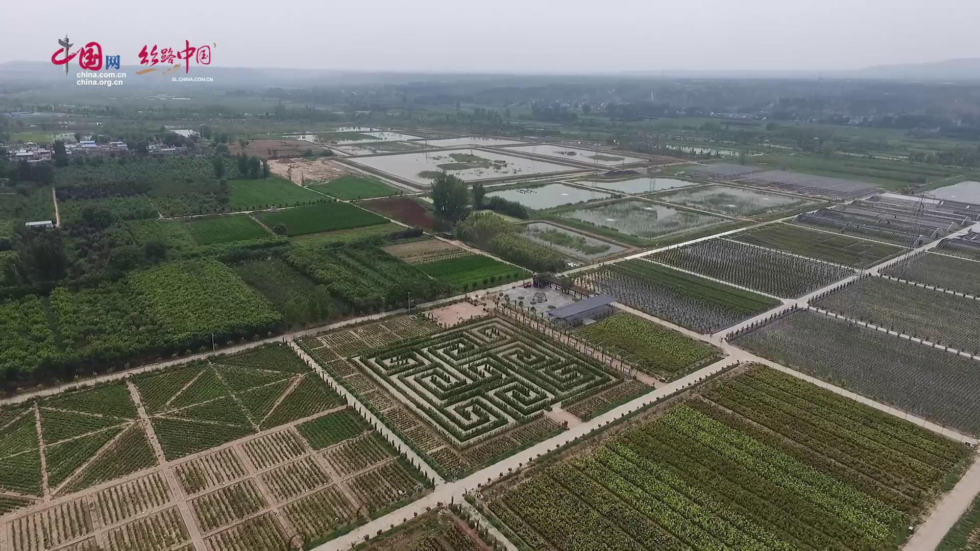【視頻】陜西韓城:圍繞建成黃河沿岸區域性中心城市目標 聚力脫貧攻堅
