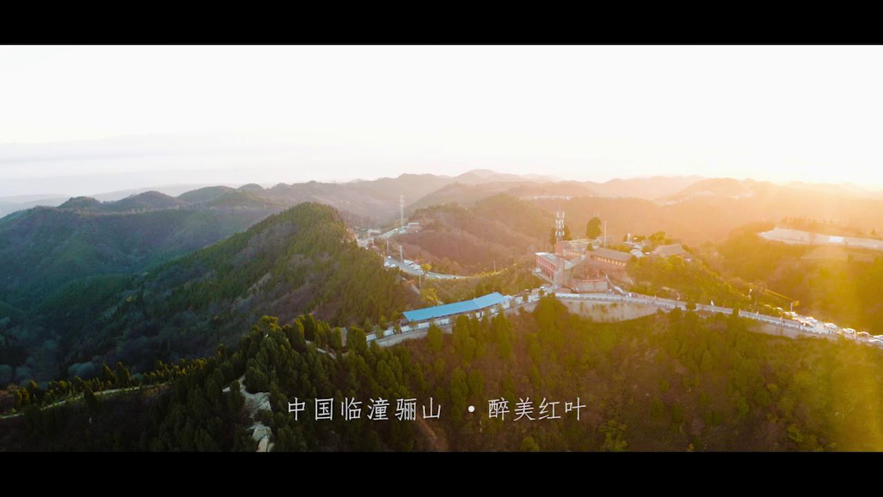 臨潼區委網信辦:醉美紅葉