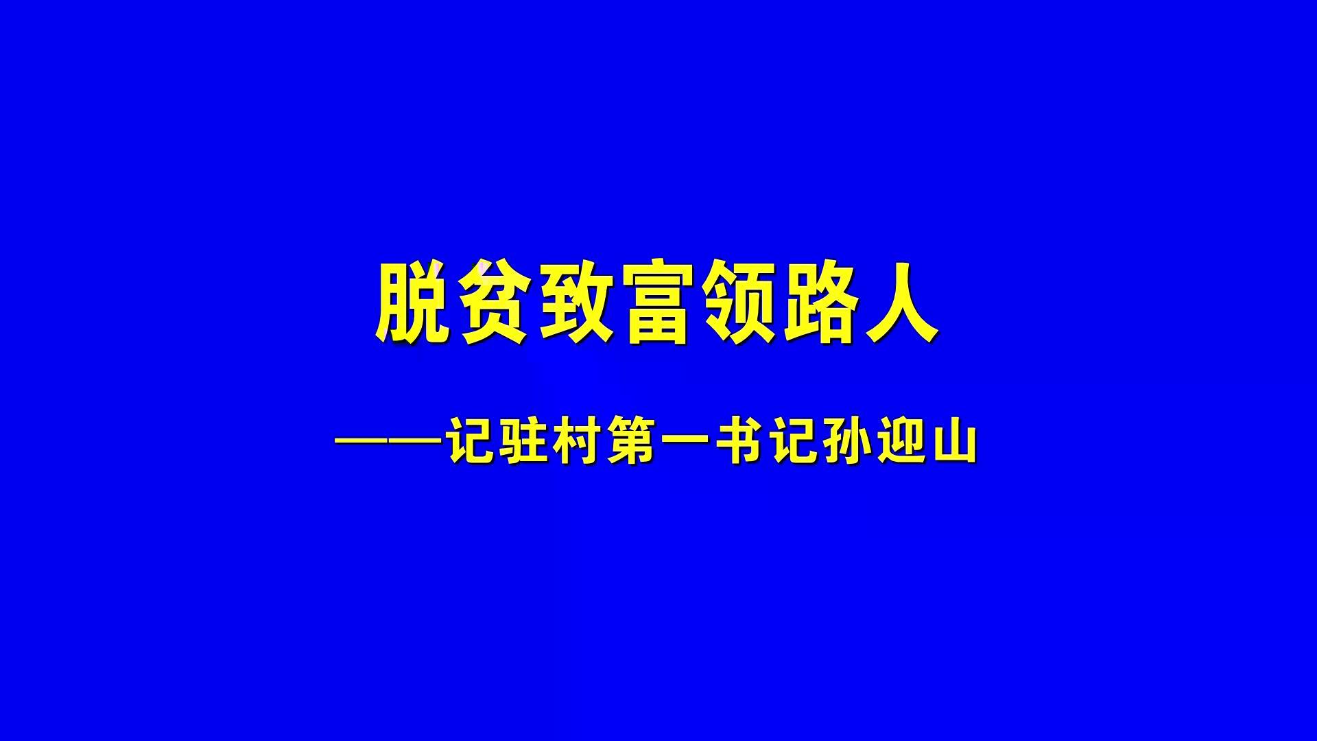 潼關縣委統戰部:脫貧致富領路人