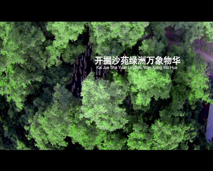 大荔县委宣传部:美丽大荔风光片
