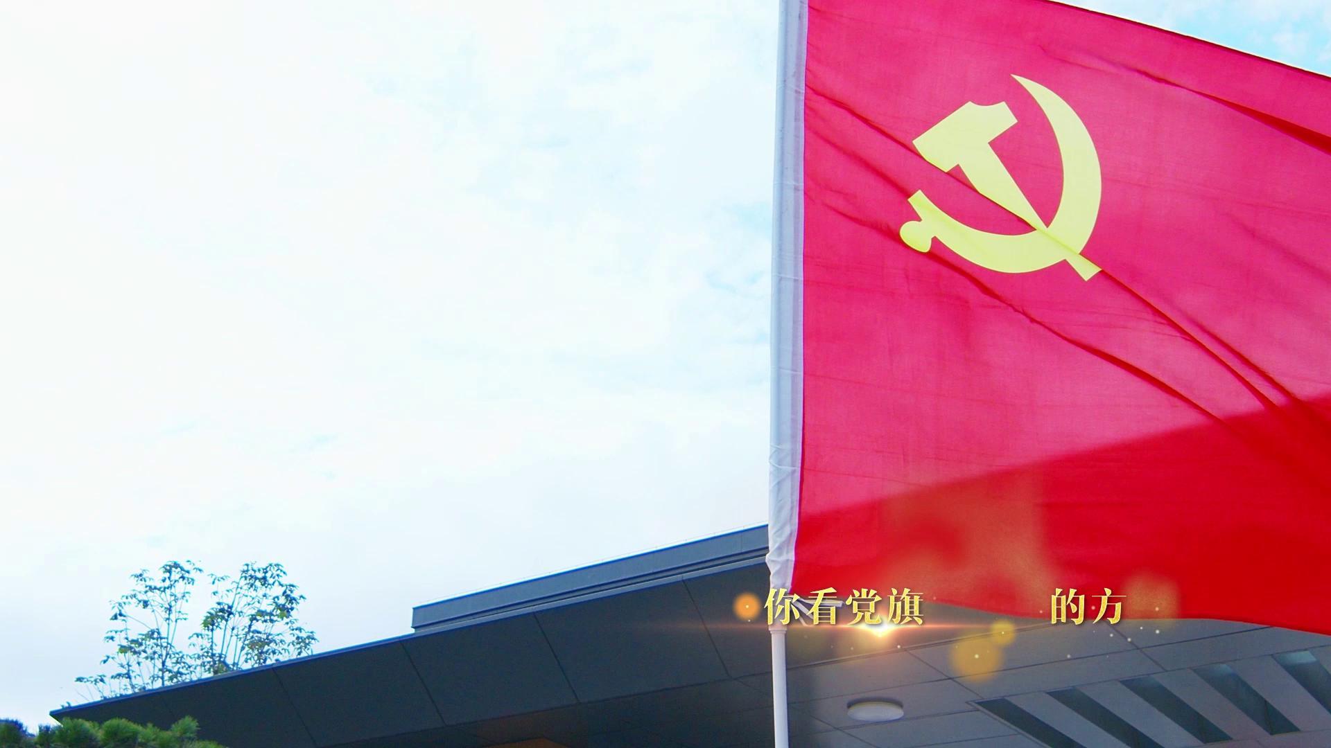 東莊水利公司:《黨旗飄揚的方向》